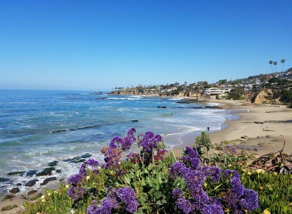 North Laguna Beach, Coastline View of Picnic Beach in Heisler Park, North Laguna Beach Neighborhoods