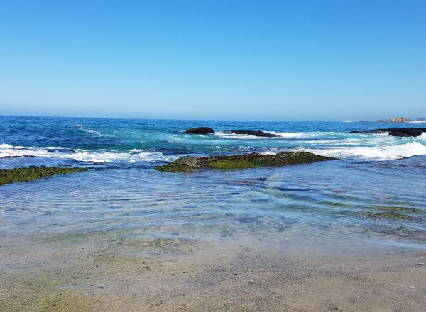 beautiful clear water west street beach laguna beach ca