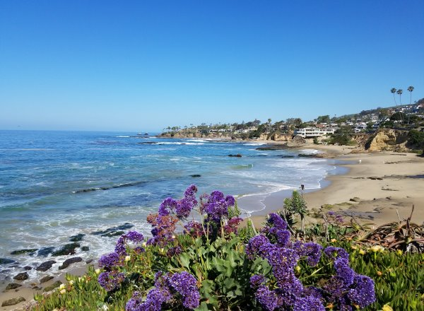 North Laguna Beach, Coastline View of Picnic Beach in Heisler Park, North Laguna Beach Neighborhoods