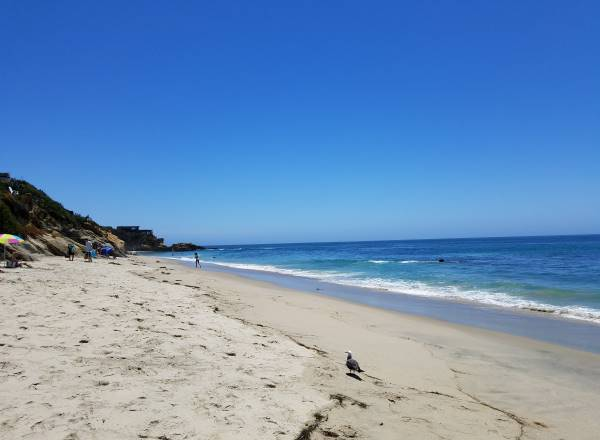 Bluebird Beach Laguna Beach Pacific Ocean California