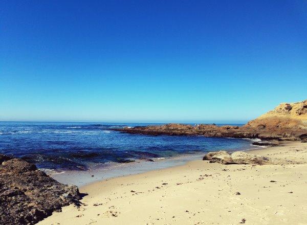 Goff Cove Laguna Beach Sandy Beach